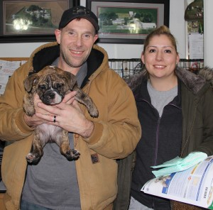 Image of Man holding Female - Brindle English Bulldog Puppy from Jimtown Kennels and woman standing beside him.