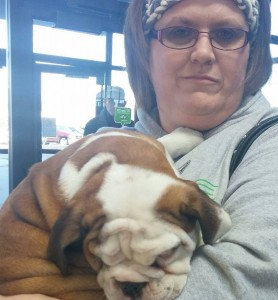 Image of Beth Shonhart with her new English Bulldog Puppy from Jimtown Kennels
