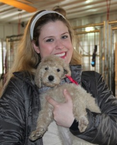 image of a woman holding a cream female labradoodle .